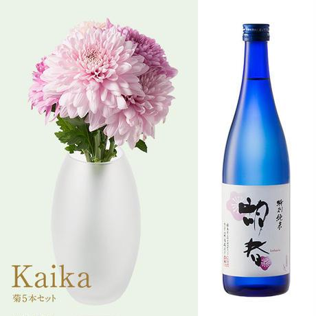 菊と酒 HanaVi -KAIKA-ピンク系×三芳菊【特別純米】