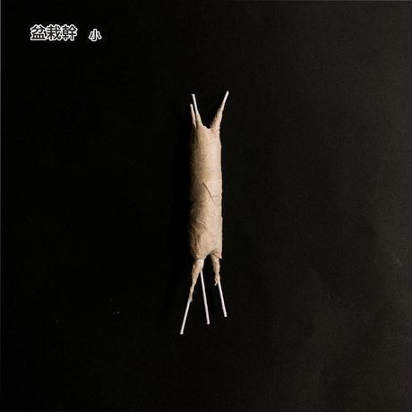 盆栽幹 極小 幹:約3.5cm×約φ0.7cm