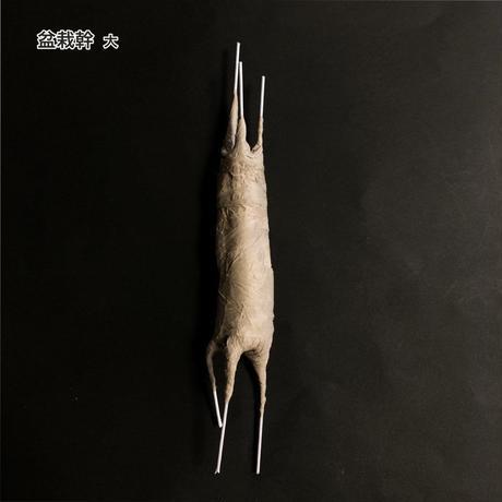 盆栽幹 大 幹:約8.5cm×約φ2cm
