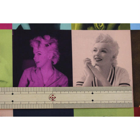 Robert Kaufman「Marilyn Monroe」  MULTI 110㎝幅10㎝単位