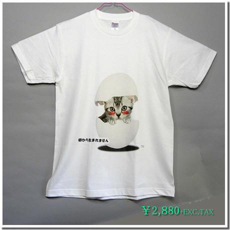 仔猫のデザインTシャツ(勘違い編) 着心地の良い定番Tシャツにアメリカンショートヘアの仔猫をモチーフに勘違いした様子をパロディ化したコミカルなデザイン。