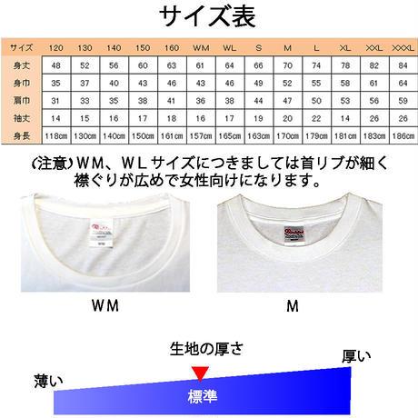 はにかみ仔猫Tシャツ(アメリカン・水色ショルダー)