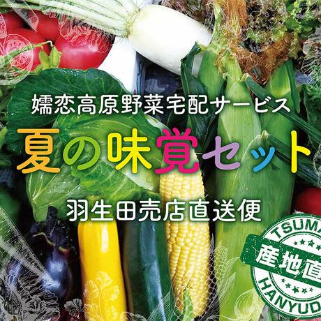【地域別送料無料】嬬恋高原野菜 夏の味覚Cセット 羽生田売店直送便