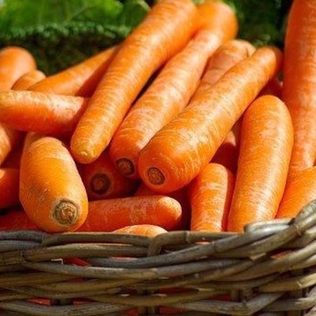 宮崎の厳選無農薬野菜 3,000円セット(1人暮らしでたっぷり野菜を食べたい方、2〜3人のご家族向け)