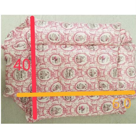 キャリー&フロアマット S  巾着セット
