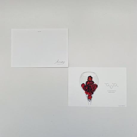 ハラペコラボのポストカード  -Glass Garnet