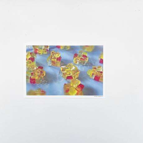 ハラペコラボのポストカード  -Yellow Cube