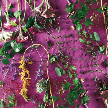 ハラペコラボの包装紙 -moe moe harapecolab peper 2019 autumn purple- (9)