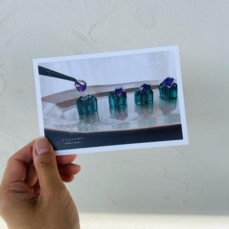 ハラペコラボのポストカード  -  GreenSeabed