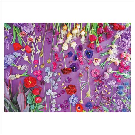ハラペコラボの包装紙 -moe moe harapecolab peper 2021 spring lavender purple- (17)