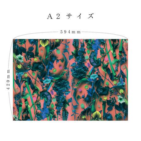 ハラペコラボの包装紙 -moe moe harapecolab peper 2020 summer pop orange- (11)