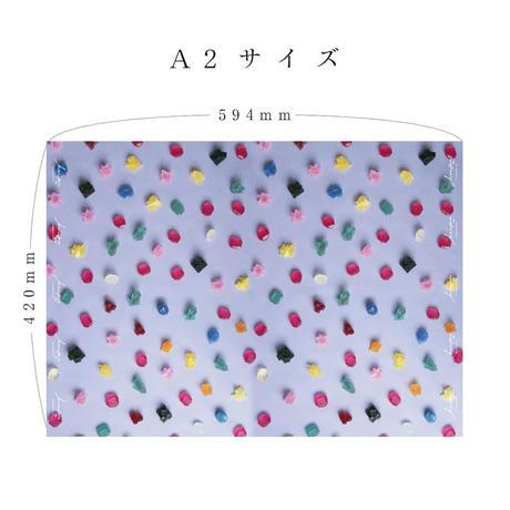 ハラペコラボの包装紙 -moe moe harapecolab peper 2019 koubutsuwokashi- (6)