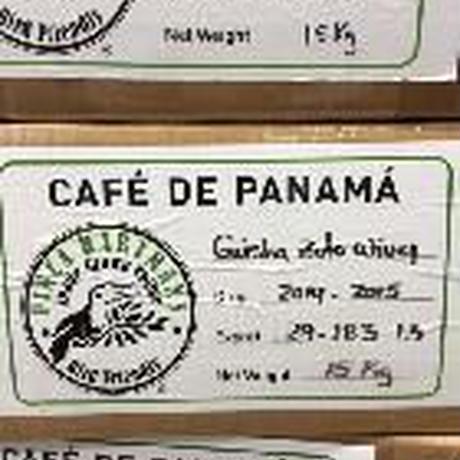 パナマ オボデアグア農園 ゲイシャ ワイニ―プロセス 自家焙煎珈琲豆