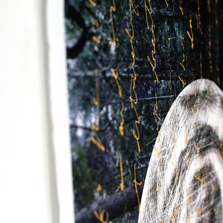 H/C × Kayo Nomura / FOREST CLOTH FRAGMENT / 線 - sen - Gold