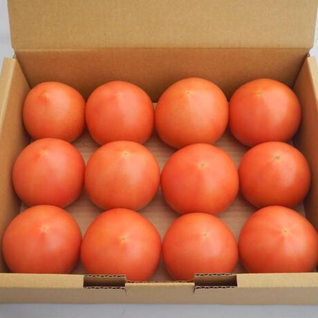 大玉トマト(約1.8kg)、ほっとま(加熱調理用トマト 約1.8kg アソート)各1箱