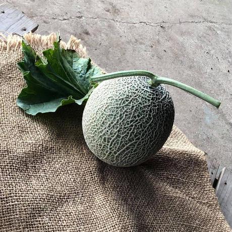 自然栽培メロン(800g前後)、自然栽培桃4個セット