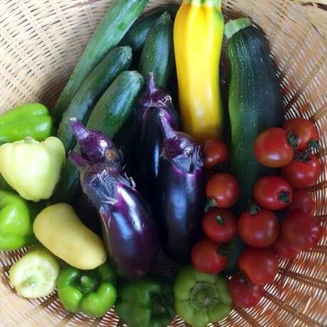 5月から野菜おまかせセット(予約)
