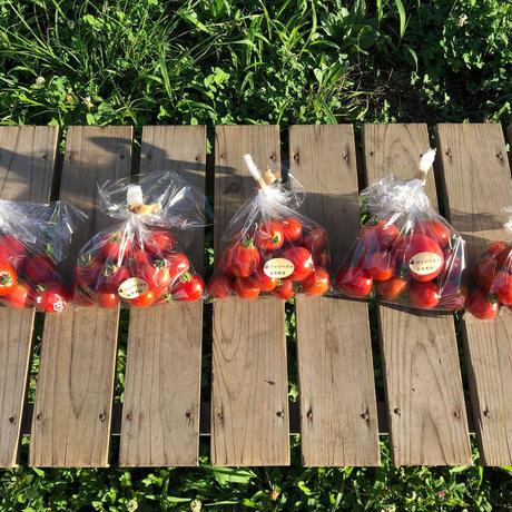 自然栽培ミニトマト1kg
