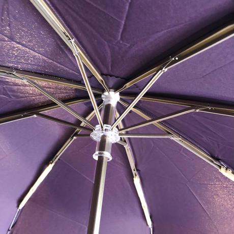 Guy de Jean ギドゥジャン 折りたたみ傘
