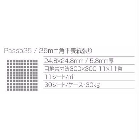 Passo PS-12