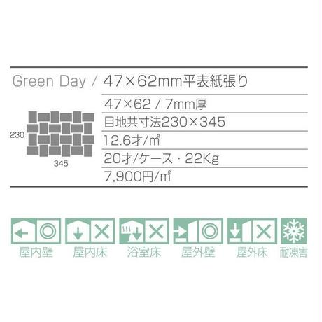 Green Day  GDY-00  (matte white)