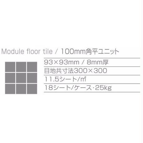 Module Floor Tile No.7