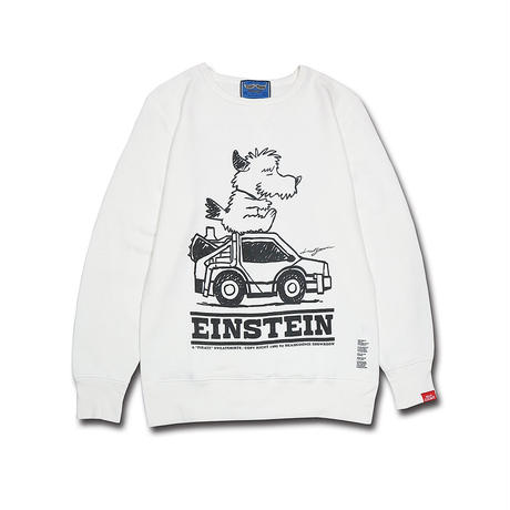 EINSTEIN VINTAGE TYPE CREWNECK SWEAT