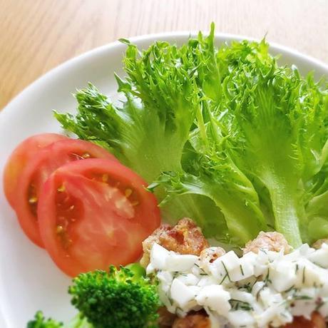 ヘラシーのオーガニック野菜定期便(from バグラスファーマーズ)
