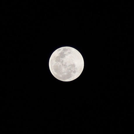 PANARINAオリジナル満月の塩250g
