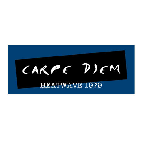 CARPE  DIEM ツアー フェイスタオル(1192-T)