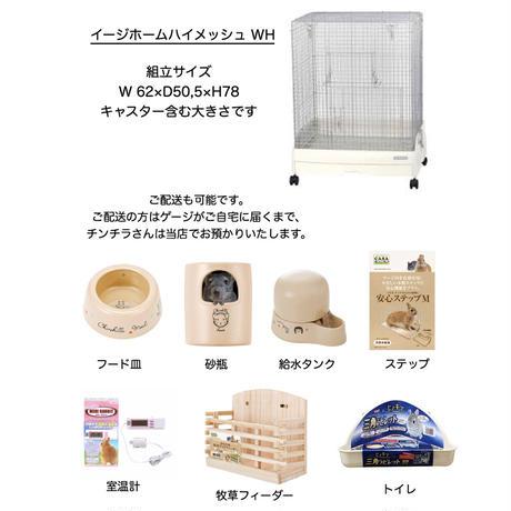【数量限定】HARRYテラス店おすすめ☆チンチラ飼育セット♪