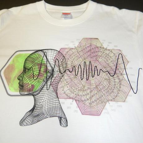 Science Brain   科学脳