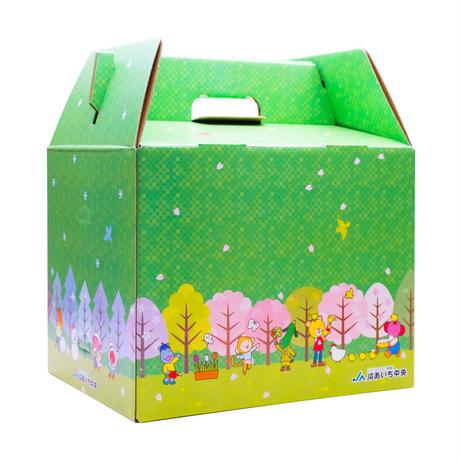 【愛知県刈谷市産】小玉スイカ (おおとり2号) 3Ⅼサイズ・2玉 ※10箱限定
