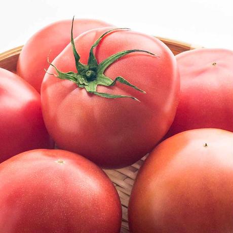 【愛知県碧南市産】へきなんトマト 4㎏箱・Lサイズ(20玉入) ※キャンペーン対象