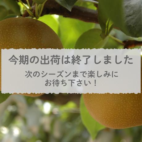 【愛知県安城市/刈谷市産】安城梨・幸水 2㎏化粧箱・5~6玉入り