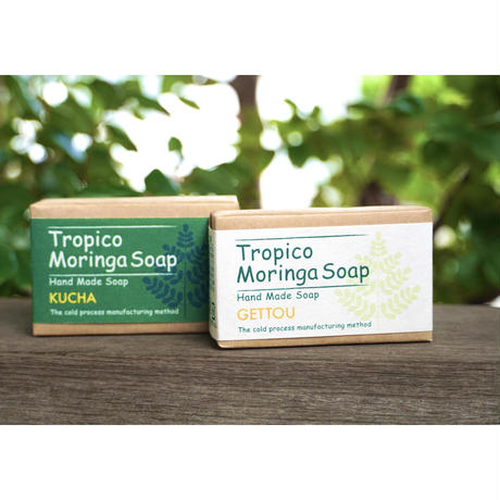 Wellness Village Tropico Moringa Soap