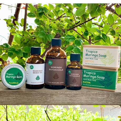 Wellness Village Moringa Skin Care set