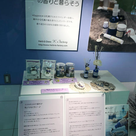 60ml Aroma Reed Diffuser Oil  アロマリードディフューザーオイル(リード付き)