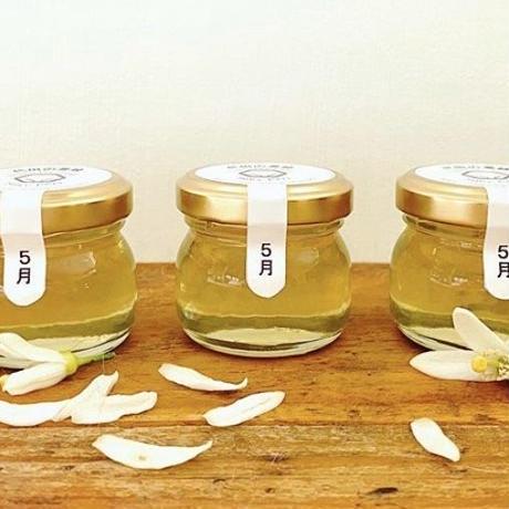 生蜂蜜とトリカトゥ(生蜂蜜120g+トリカトゥ20g)