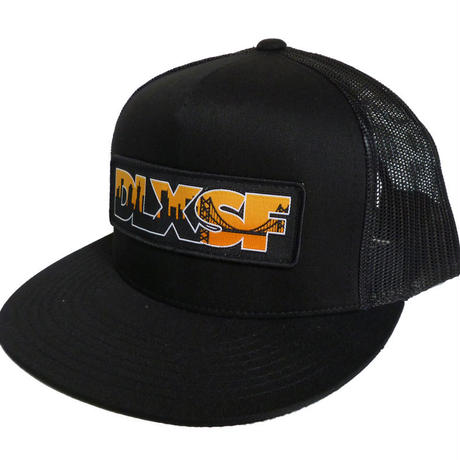 DLXSF SKYLINE PATCH MESH CAP