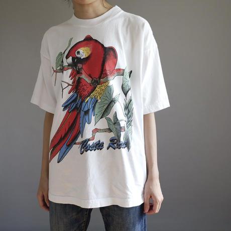 brilliant free as a bird/unisex