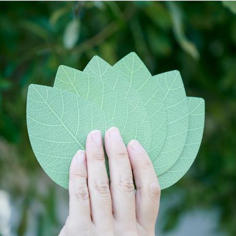 どちらの手でも見やすい 葉っぱのトランプ