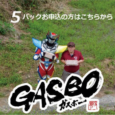 """超ロング粗挽きウインナー """"ガスボ-"""" 1本100g×10本×5パック"""
