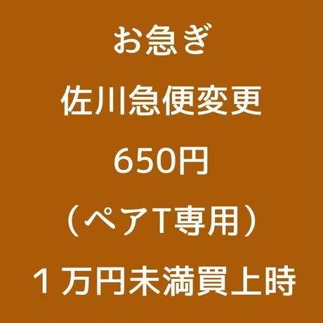 5c870485164eb1412590864a