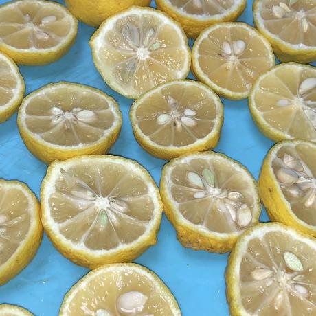 【のど 健康 美容】かりんスパイスシロップ230g&かりんママンチュール85g&柑橘系ママンチュール85g