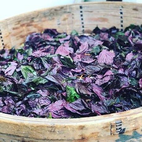 摘みたて赤紫蘇ジュースの素 370ml