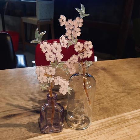 """枯れない花 """"桜"""""""