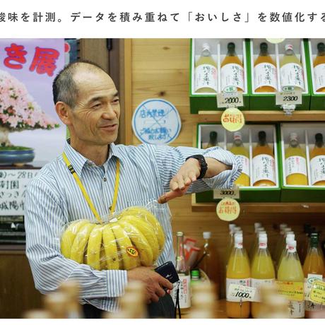 """贈り物に最適!無添加ジュース 搾ったまま果汁(1L瓶 3本セット)糖度15度 """"驚きの美味しさ""""ご体験ください"""