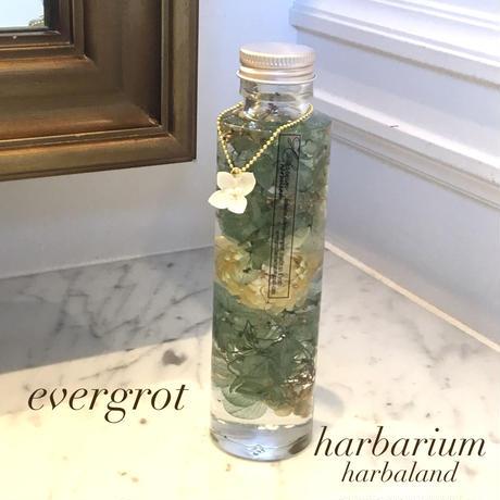 【Harbalium】ハーバリウム ミントスノー