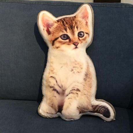 おひとりさま ネコちゃんクッション